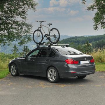 Fahrradträger ProRide 598 silver f. Dach